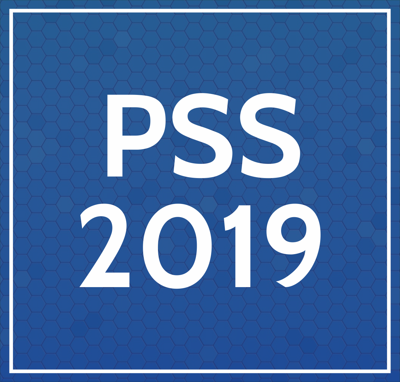 PSS 2019 LATERAL