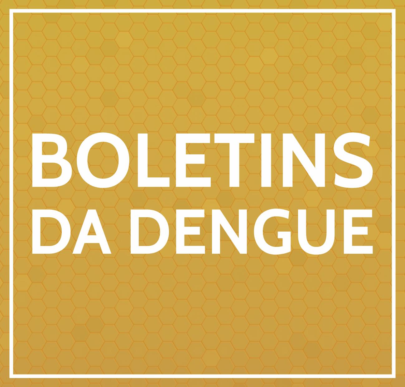 BOLETINS DA DENGUE